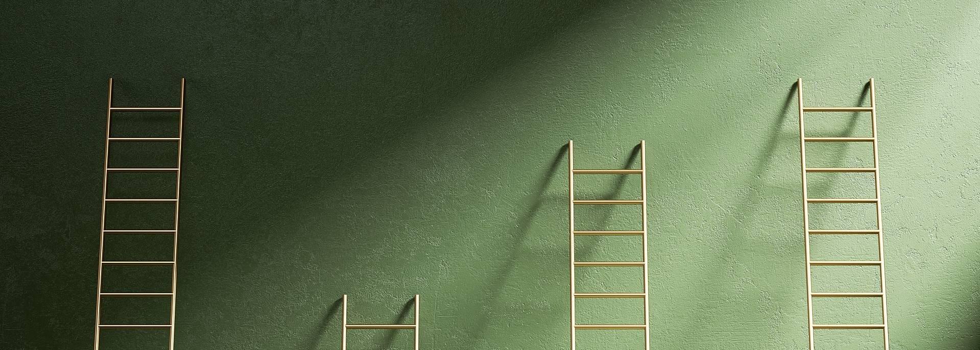 IT career advancement ladders
