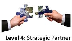 IT strategic partner