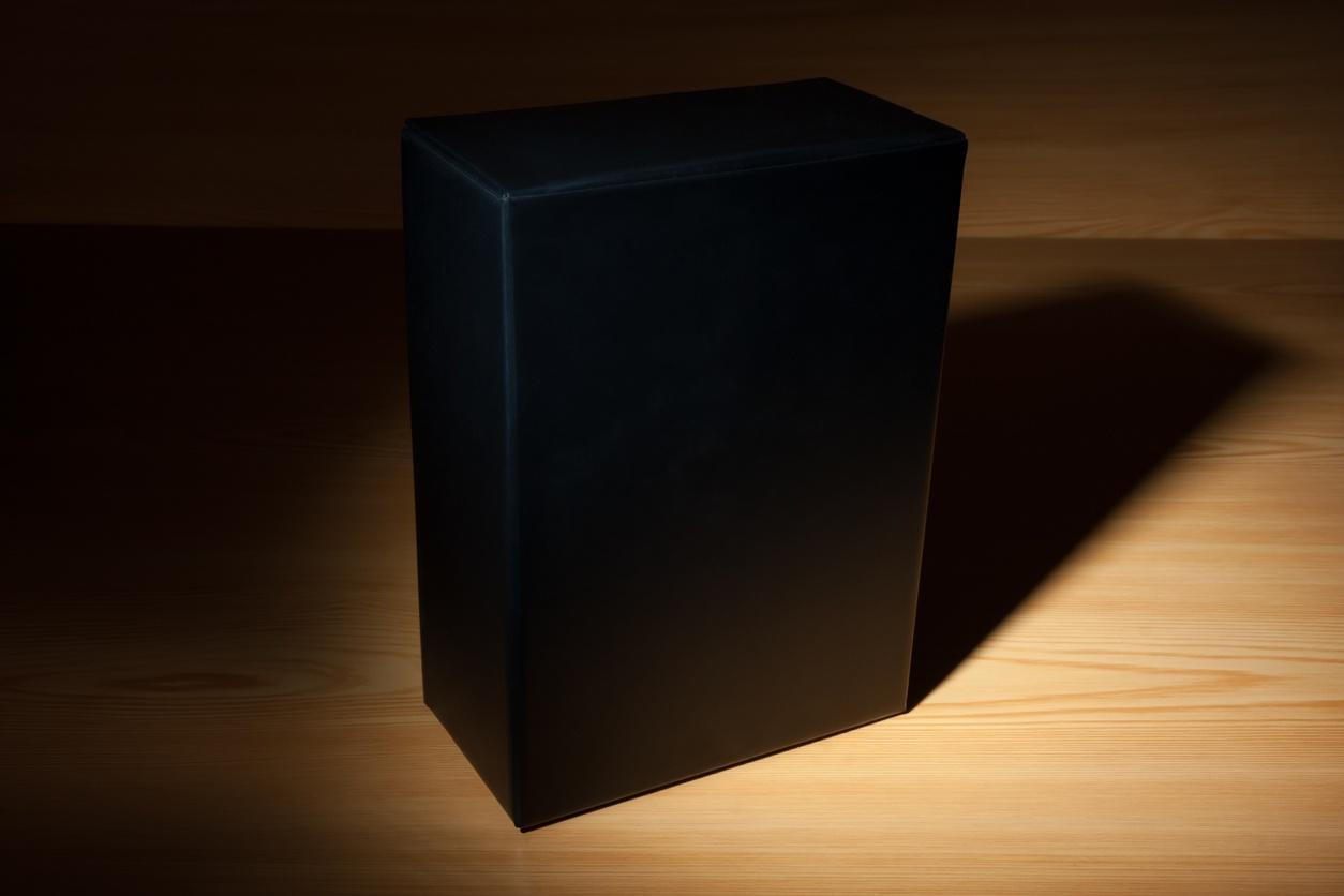 IT transparency black box.jpg