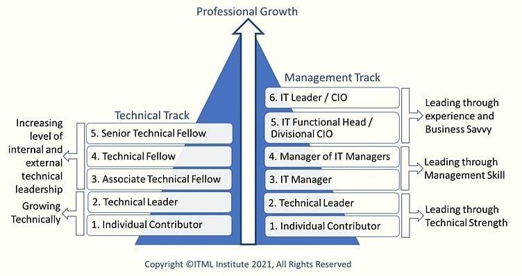 IT Leadership Maturty Model