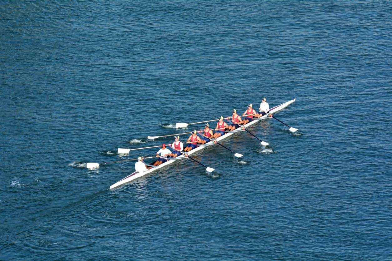 Rowers, crew on river, teamwork, COP